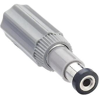 Low power connector Plug, straight 6 mm 1.98 mm L