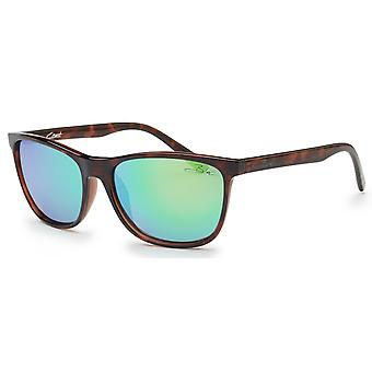 Bloc Coast Sunglasses - Shiny Tort / Green