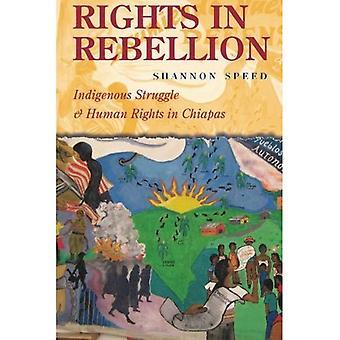 Rättigheter i uppror: inhemska kamp och mänskliga rättigheter i Chiapas