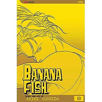 Banana Fish: Volume 9 (Banana Fish)