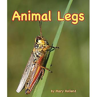 Animal Legs by Mary Holland - 9781628558432 Book