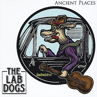 Lab Dogs - Ancient Places [CD] USA import