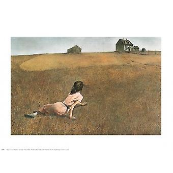 Christinas World Poster Print by Andrew Wyeth (30 x 24)