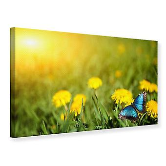 Canvas Print Dandelion And Butterfly