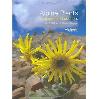 Alpine Plants: Ecology for Gardeners