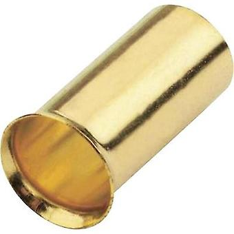 Ferrules 16 mm² Sinuslive gold-plated