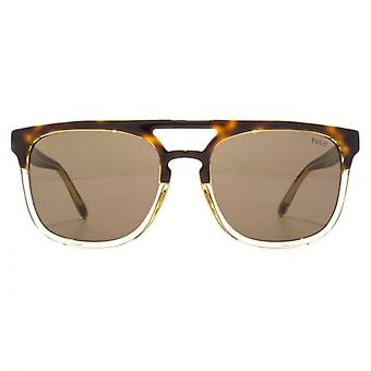 Polo Ralph Lauren Flat Top Double Bridge Sunglasses In Light Havana Clear