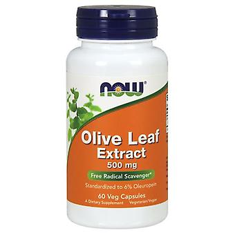 Now Foods Olive Leaf Extract 500Mg 60 Veggie Capsules