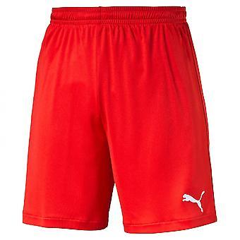 PUMA Velize shorts w innerslip