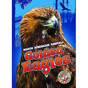 Golden Eagles (North American Animals)