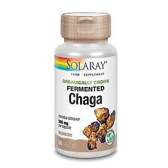 Solaray Organically Grown Fermented Chaga Mushroom Vcaps 60 (88131)