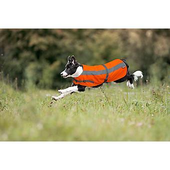 Flecta Hej Vis hund jakke Camouflage 16
