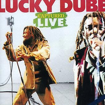 Lucky Dube - Captured Live [CD] USA import