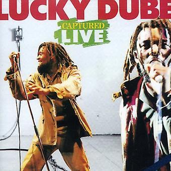 Lucky Dube - importación capturados de Estados Unidos en vivo [CD]