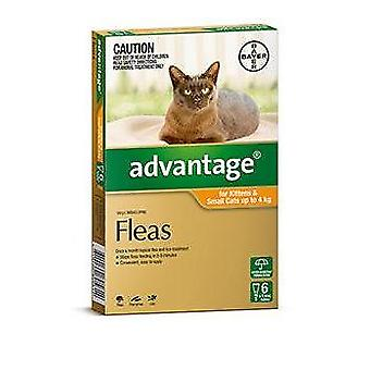 Advantage Orange 6 Pack Small Cat 0-4kg