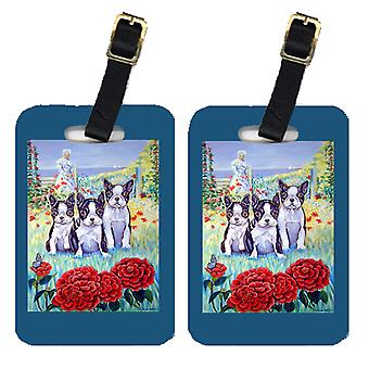 Carolines Treasures  7005BT Pair of 2 Boston Terrier Three in a Row Luggage Tags