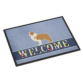 Red Border Collie Welcome Indoor or Outdoor Mat 24x36