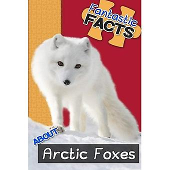 Fantastic Facts about Arctic Foxes: Illustrated Fun Learning for Kids