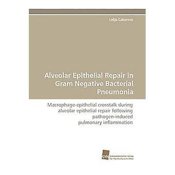 Riparazione epiteliale alveolare in Gram negativo polmonite batterica da Cakarova Lidija