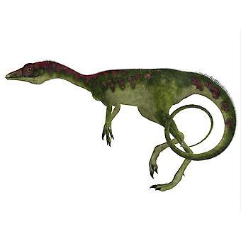 Profil boczny dinozaur kompsognat kompsognat był mały teropoda żyjącego w okresie Jurajski Europy Poster Print