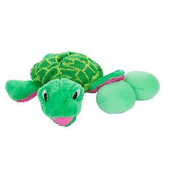 Passiv Hound æg babyer skildpadde
