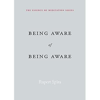 Being Aware of Being Aware: The Essence of Meditation, Volume 1 - Essence of Mediation