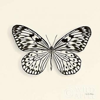 Impresión de cartel mariposa V cosecha BW por Debra Van Swearingen