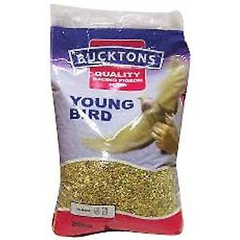 Bucktons Pigeon jeune oiseau 20kg