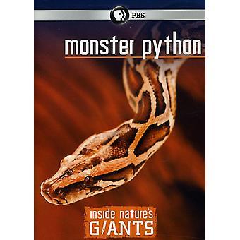 Monster Python [DVD] USA importerer