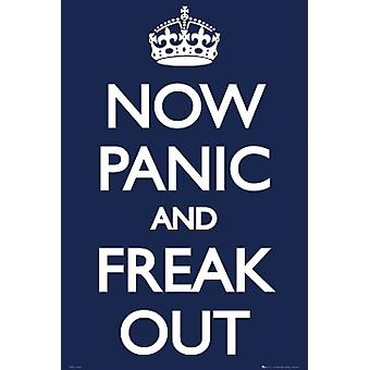 Now Panic And Freak Out Poster Poster Print