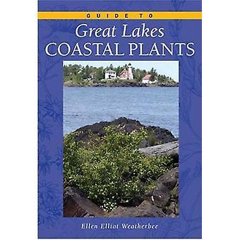 Guide till stora sjöarna kustnära växter av Ellen Elliott Weatherbee - 978