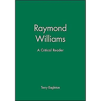 Raymond Williams: Perspectives critiques