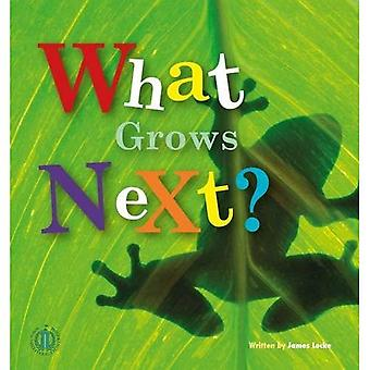 What Grows Next? (The Literacy Tower)