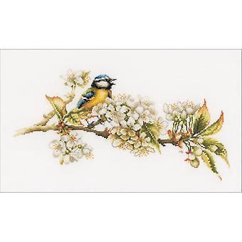 LanArte Blue Tit On Cotton Counted Cross Stitch Kit-16