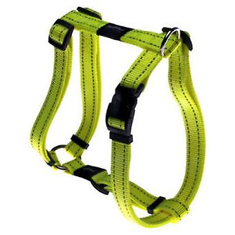 Rogz Harness - Nitelife Special (Dogs , Walking Accessories , Harnesses)