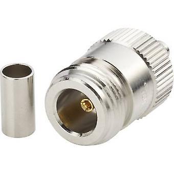 N connector Socket, straight 50 Ω Amphenol N6121A1-NT3G-1-50
