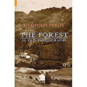 Skogen i gamle fotografier av Humphrey Phelps - 9781848683396 bok