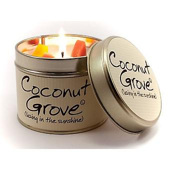 Lily Flame Scented Candle in a presentation Tin - Coconut Grove