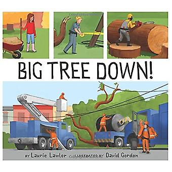 Big Tree Down! by Laurie Lawlor - 9780823436613 Book