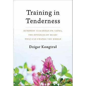 Training In Tenderness - Buddhist Teachings on Tsewa - the Radical Ope