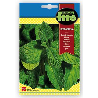 Semillas Fitó Peppermint seed (Garden , Gardening , Seeds)
