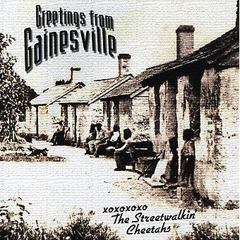 Streetwalkin' Cheetahs - Gainesville [CD] USA import