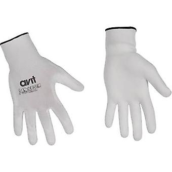 Nylon Protective glove Size (gloves): 10, XL EN 388 , EN 420
