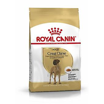 Royal Canin Great Dane Adult (Dogs , Dog Food , Dry Food)