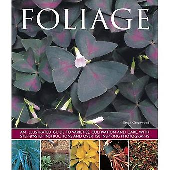 Foliage: An Illustrated Guide to Varieties, Cultivation and Care, with Step-By-Step Instructions and Over 150...