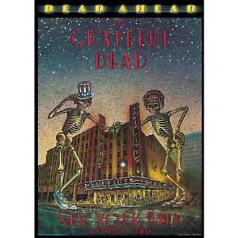 Grateful Dead - Dead Ahead [DVD] USA import
