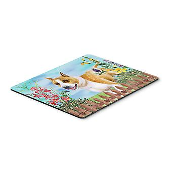 American Staffordshire Spring Mouse Pad, Hot Pad or Trivet