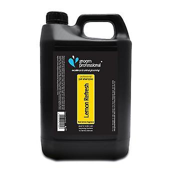 Novio de refresco de limón profesional Shampoo 4 litros