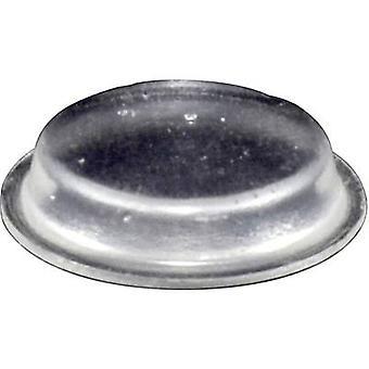TOOLCRAFT PD2024C Foot self-adhesive, circular Transparent (Ø x H) 19 mm x 4 mm 1 pc(s)