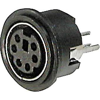 Mini DIN connector Socket, vertical vertical Number of pins: 6 Black ASSMANN WSW A-DIO-TOP/06 1 pc(s)